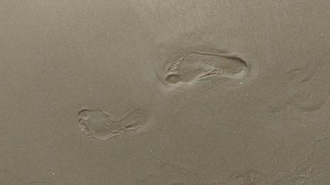 Perspective Mosaic Footprints Let Go Beach