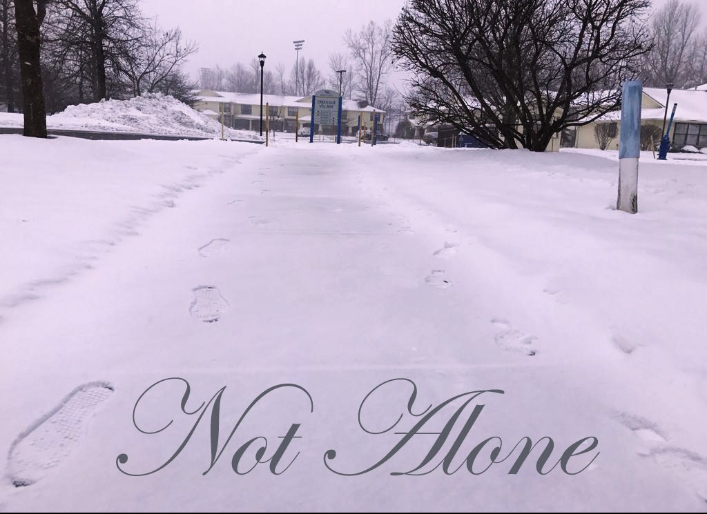 Not Alone Snow Perspective Mosaic