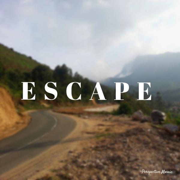Perspective mosaic escape Munnar Kerala