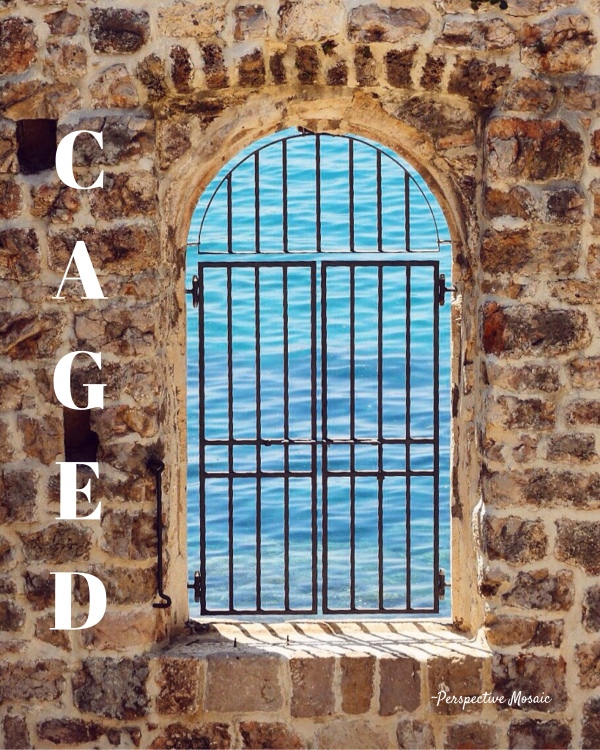 Caged Perspective Mosaic travel sea water