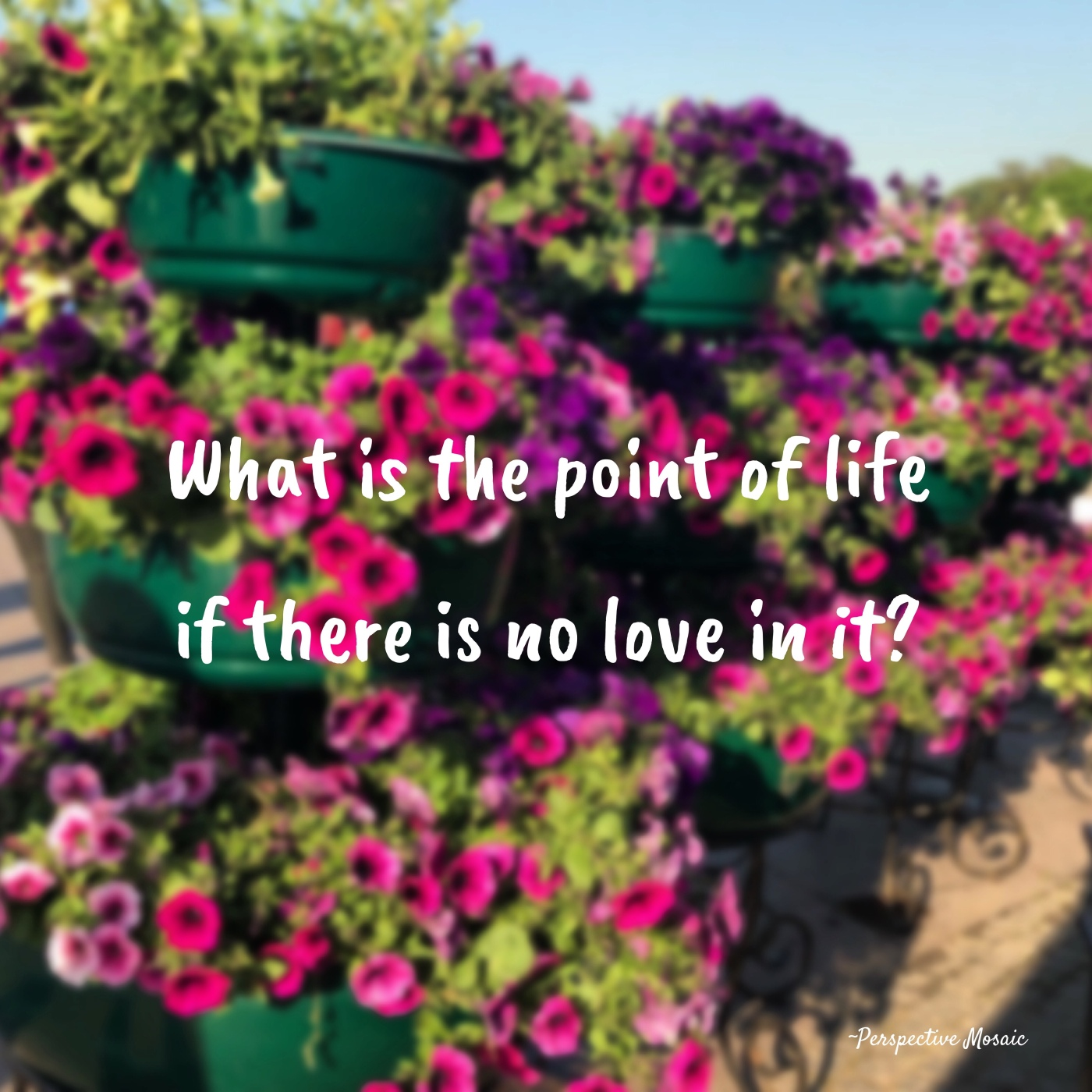 Life love perspective mosaic Nicole paralkar